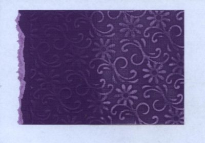 Core'dinations Cardstock