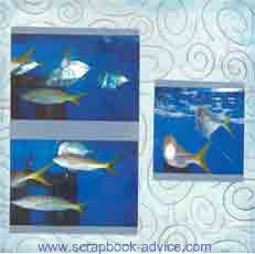 Aquarium Scrapbook Layout showing Fish School