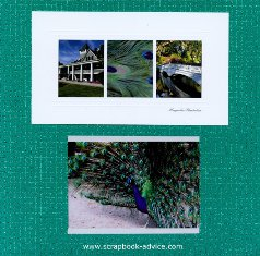Magnolia Plantation Scrapbook Cover Page