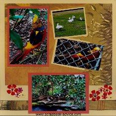 Magnolia Plantation Pheasant