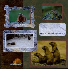 Yellowstone Park Scrapbook Layout showing small mammals such as squirrels & chipmonks