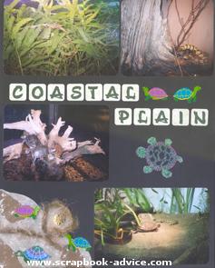 Aquarium Scrapbook Layout