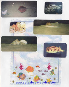 Aquarium Scrapbook Layout showing sand and coral