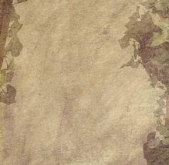 Companion Scrapbook Paper