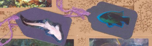 Cropped Scrapbook Layout Photos