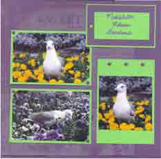 Middleton Gardens Scrapbook Layout