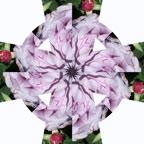Kaleidoscope Celtic Cross