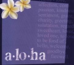 Scrapbook Paper Hawaii Aloha