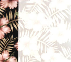 Scrapbook Paper Hawaiian Flowers black border on left with watermark flowers on right