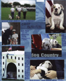 Pet or Mascot Scrapbook Layout