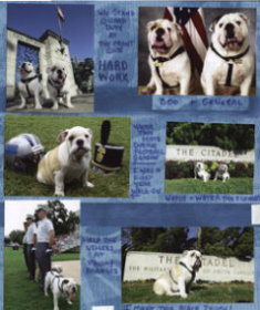 Pet or Mascot Scrapbook Layout