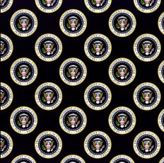 Obama Inauguration Scrapbook Paper