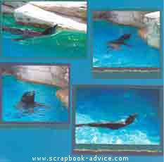 Aquarium Scrapbook Layout using layered torn photo mattes & Tags