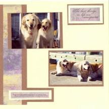Windy Pet Scrapbook Layout