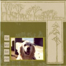 Outdoor Pet Scrapbook Layout