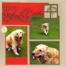 Windy Outdoor Pet Scrapbook Layout