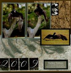 Birds of Prey Scrapbook Layout