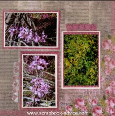 Hampton Park Floral Scrapbook Layout