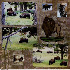 Yellowstone Scrapbook Layouts showing Buffalo at Hayden Valley & with snow