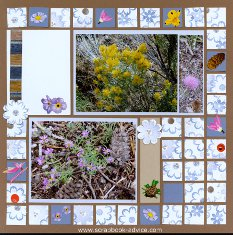 Yellowstone Park Flowers done using Mosaic Moments Page Kit Layout