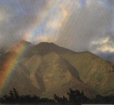 Scrapbook Paper Maui Rainbow