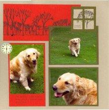 Windy Outdoor Pet Scrapbook Layout