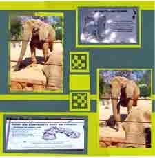 Zoo Africa Scrapbook Layout of Elephant