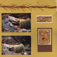Zoo Africa Scrapbook Layout of Alligators