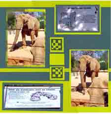 Zoo Africa Scrapbook Layout of Elephant