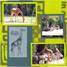 Zoo Africa Scrapbook Layout of Giraffe